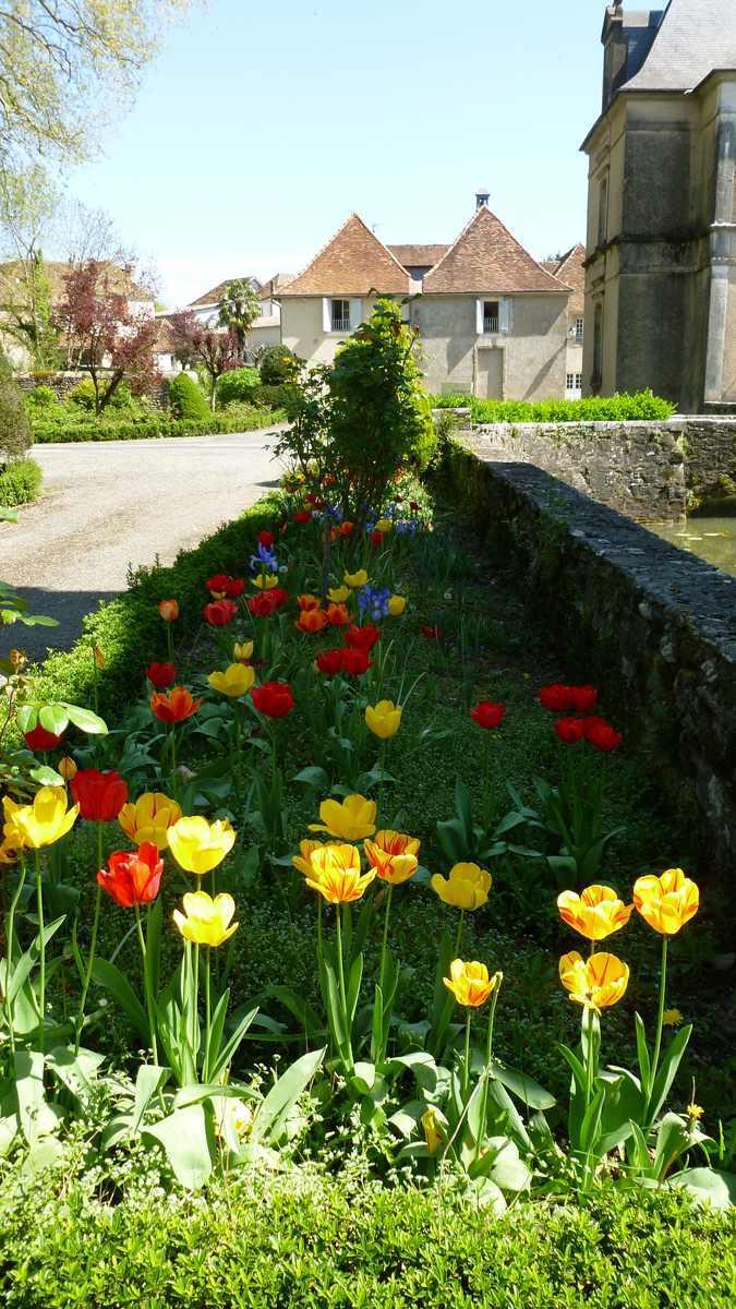 une partie du parc du château d'Audaux