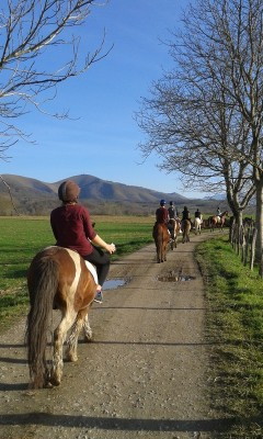 L'activité équitation