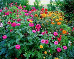 Les Floréales ou comment le dire avec des fleurs